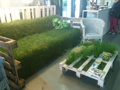 ławka z trawy