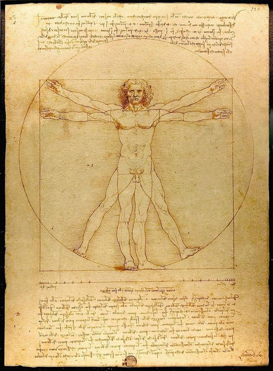 Studium proporcji ludzkiego ciała